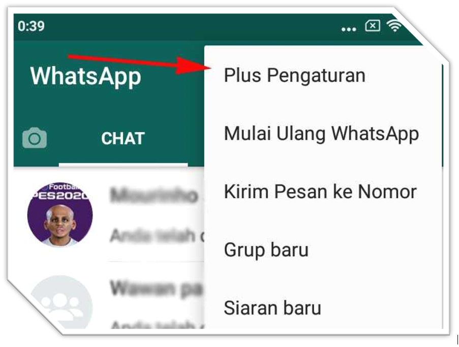Pengaturan Whatsapp Plus